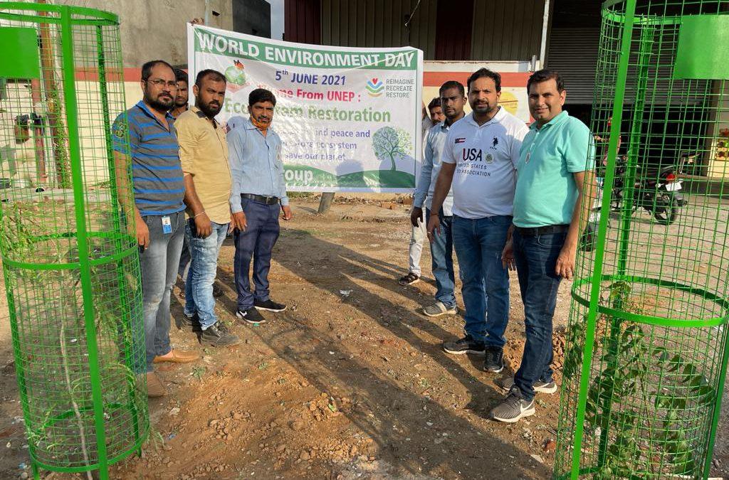 Tree plantation on World Environment day-2021